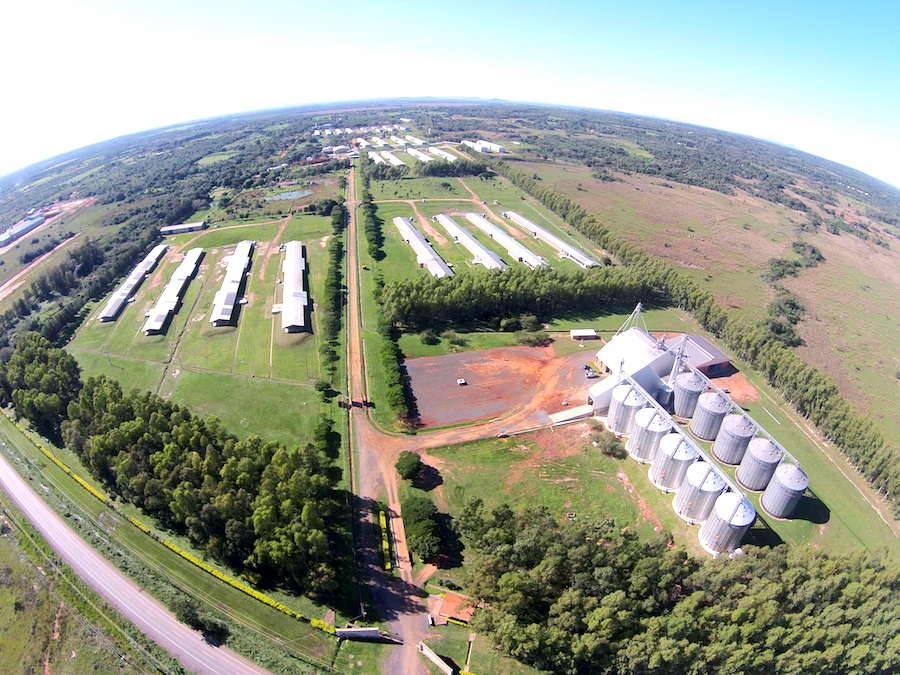 El complejo Las Tacuaras opera en 125 hectáreas, de las cuales 13 son bosques certificados. Foto:  Archivo.