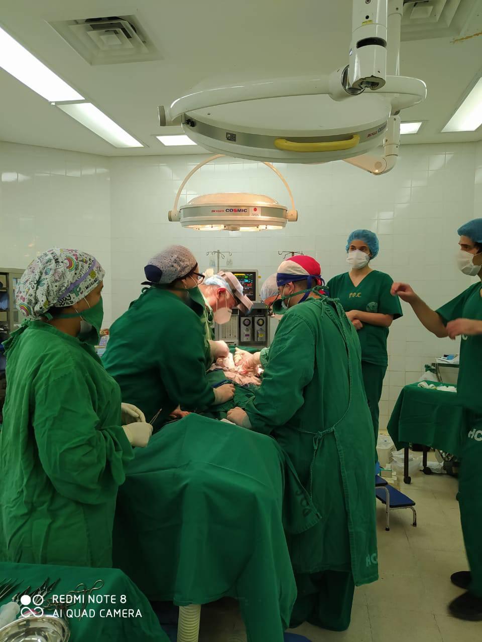 Resultado de imagen para trasplante riñón clinicas